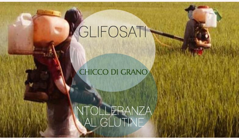 glifosati_glutine 2